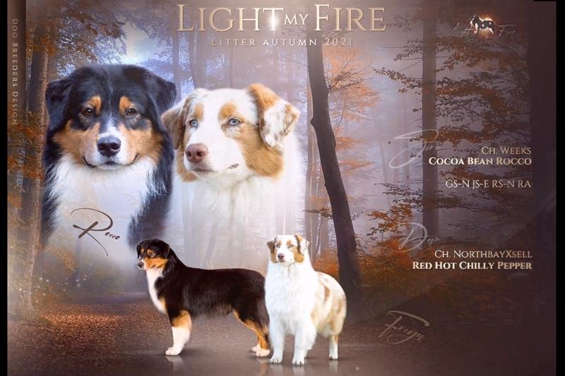 Lightmyfire-Wurfplanung-Herbst-2021