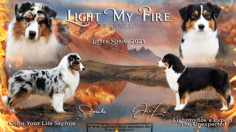 light-my-fire-2