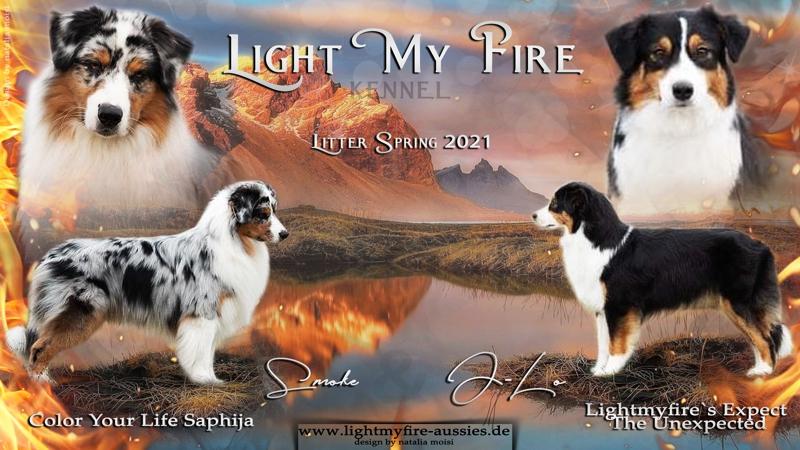 light-my-fire-2