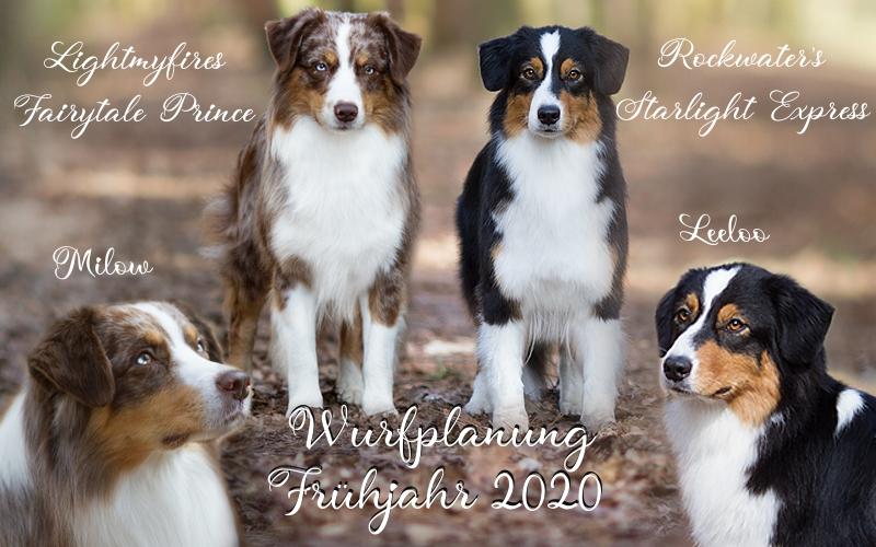 Wurfplanung-2020
